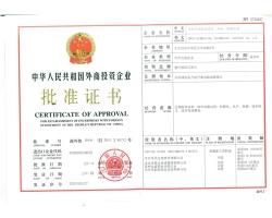 外商投资批准证书